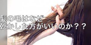 髪の毛をドライヤーで乾かした方がいい理由とは?