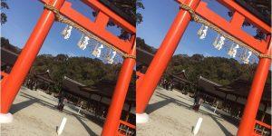 京都マラソンで盛り上がってる中、上賀茂神社に参拝へ。